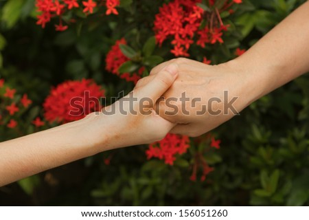 Hands of mother and daughter holding  together