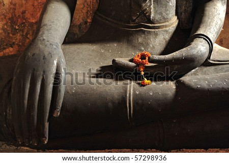 hands of the buddha and dry flower - stock photo