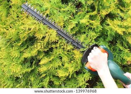 Hands of woman uses a gas powered hedge trimmer - stock photo