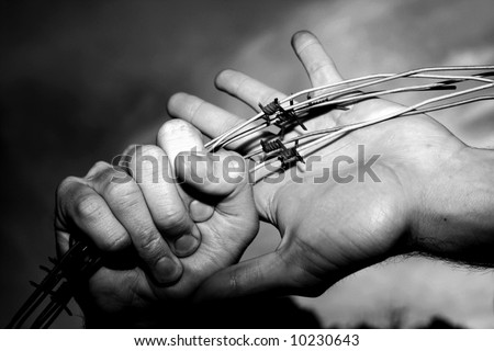 Hands on barbed wire - stock photo
