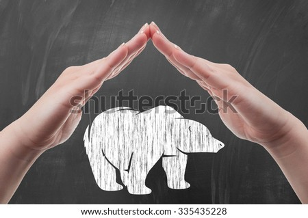 Hands protecting polar bear draw on blackboard as animal protection and poaching concept - stock photo