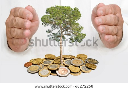 Hands protecting tree - stock photo