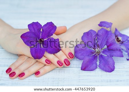Hands with pink manicured fingernails and beautiful purple flowers
