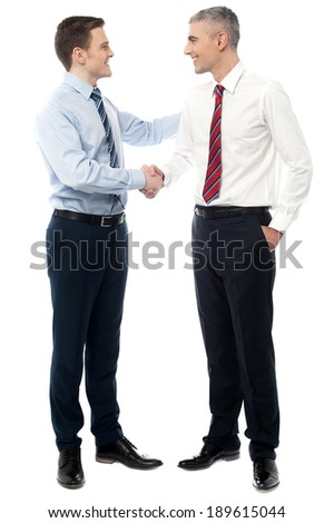 Handsome executives shaking hands - stock photo