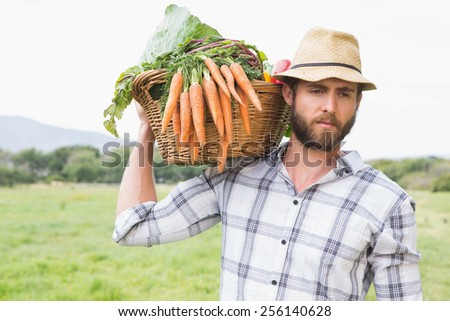 Handsome farmer with basket of veg on a sunny day - stock photo