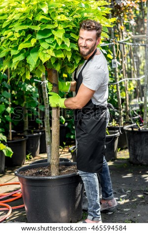 Handsome gardener in black apron carrying a tree. Plants delivery. Customer service in the plants store