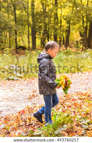 Handsome little boy in sunny autumn park with maple leaves
