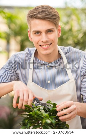 Handsome male florist pruning a plant in the greenhouse. And looking at camera. - stock photo