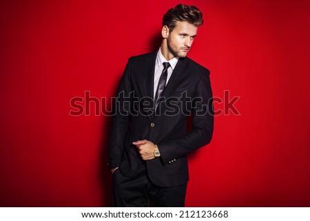 Handsome man in suit - stock photo