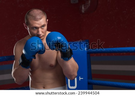 Handsome muscular young man wearing boxing gloves. Boxer with blue gloves in blue ring