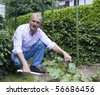 Handsome senior man working in a garden - stock photo