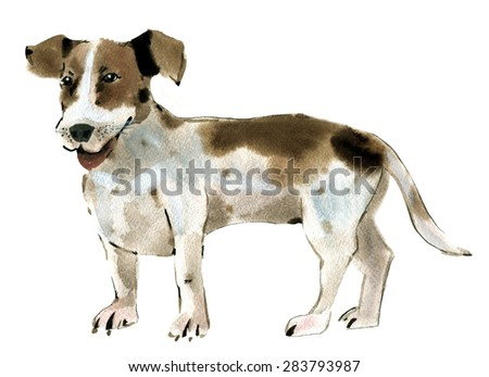 Handwork watercolor illustration of dog Jack Russell Terrier in white background.