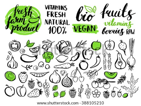 Handwritten food elements with rough edges. Healthy food, farm, fresh, vegan, natural, product, bio. Green market. Ink brush hand lettering.Fruits, berries and vegetables. Lettering. Icon.