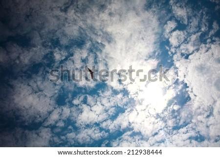hang glider  sky - stock photo