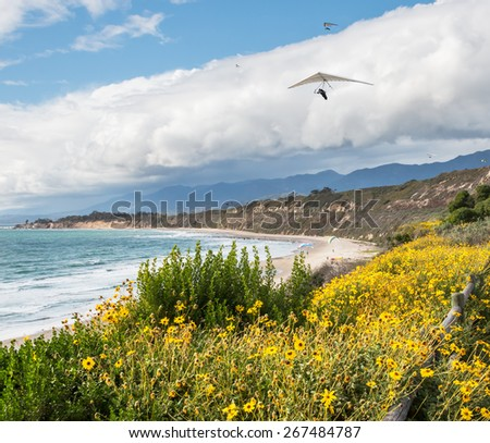 Hang gliders, parasailing and paragliding along the Pacific coast in Carpinteria, California.