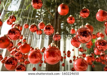 hanging christmas baubles at a christmas tree - stock photo