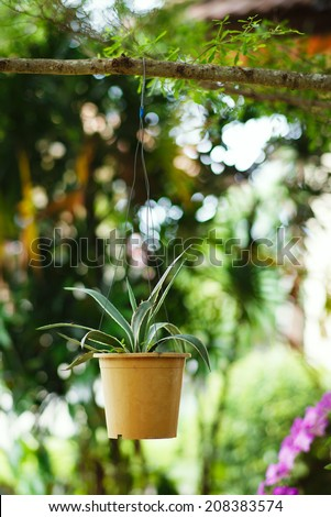 Hanging Garden. A flower pot, hanging on bench in the park. Contrast of green colors. Vertical format photography, nobody in sight. - stock photo