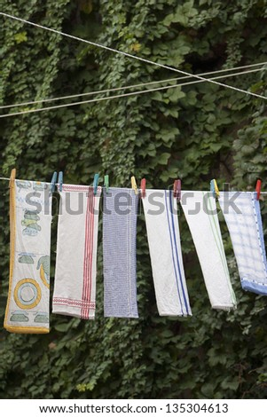 Hanging kitchen towels on rope on leaves background