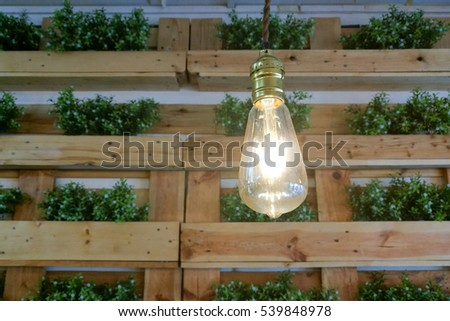 hanging light bulb hanging in front of green plant. Interior decoration