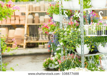 Hangup pots with flowers in garden center greenhouse plants shelves - stock photo