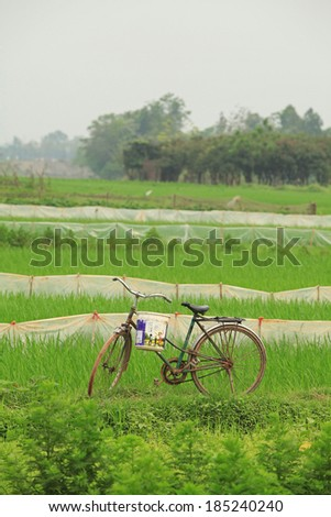 HANOI, VIETNAM - APR 1, 2014: Vietnamese farmer's bicycle parking on the side of paddy field. Bicycle is still a popular vehicle of Vietnamese.