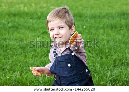 Happy and cheerful boy eating cookies in the park - stock photo