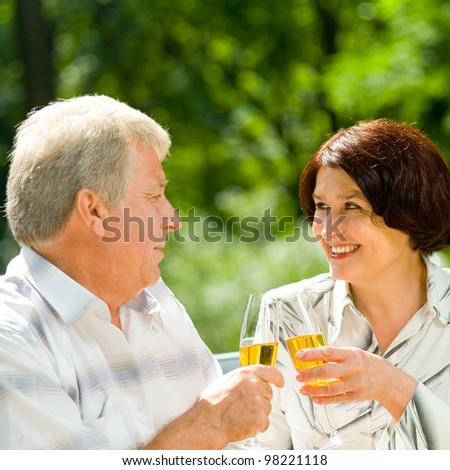 Happy attractive senior couple celebrating together with champagne, outdoors - stock photo