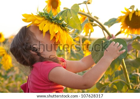 Happy baby smelling big sunflower on summer field. Unity with nature
