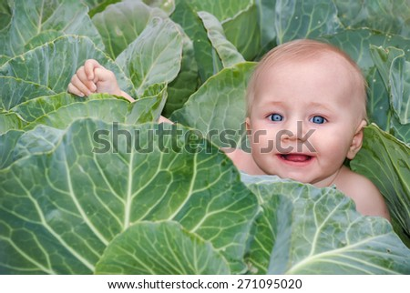 Happy beautiful baby in green cabbage leaves, the traditional story for children about where newborn babies come from. - stock photo