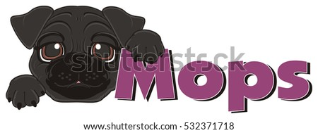 happy black snout of pug hold a word mops