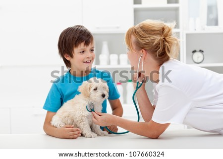 Happy boy and his fluffy dog at the veterinary checkup - focus on pet - stock photo