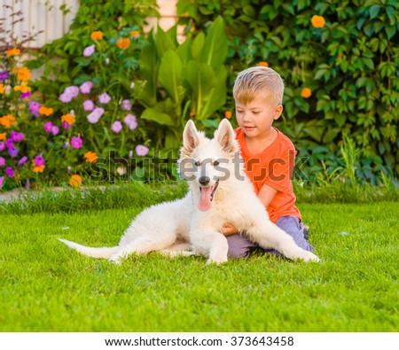Happy boy embracing White Swiss Shepherd`s puppy on green grass - stock photo