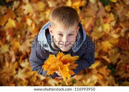 happy boy on a background of autumn leafs. top view