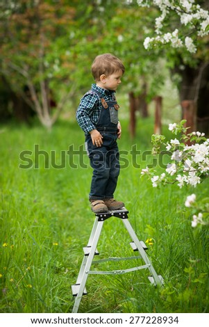 happy boy on a ladder playing in the garden