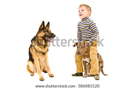 Happy boy playing with a two dogs, isolated on white background - stock photo