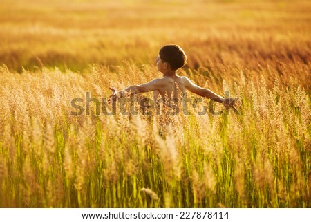 Happy boy running in the tall grass on a summer evening - stock photo