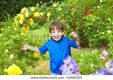 Happy boy the field - stock photo