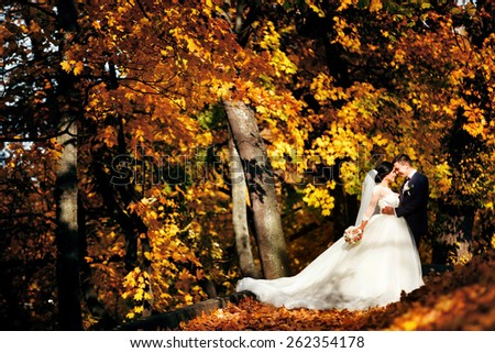 happy bride and groom walking in the autumn forest. park. many yellow leaves - stock photo