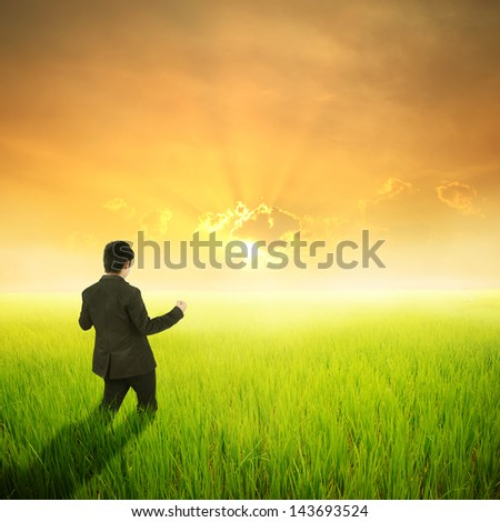 Happy business man in green rice field and sunset - stock photo