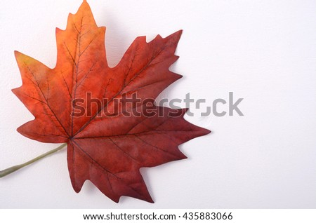 Happy Canada Day Symbolic Maple Leaf Stock Photo Edit Now