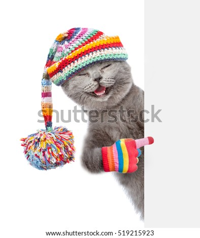 Happy cat wearing a warm hat peeking and pointing at empty board. isolated on white background