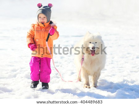 Happy child and white Samoyed dog walking together in winter day