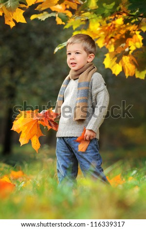 happy child in autumn park with yellow leaves in hands