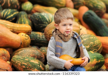 Happy child is sitting on a mountain of pumpkins. Sunny autumn day