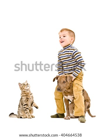 Happy child playing with a puppy pit bull and cat isolated on white background - stock photo