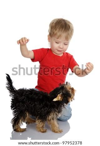 Happy child playing with dog. isolated on white background - stock photo
