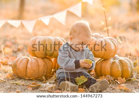 happy child with pumpkins on sunset