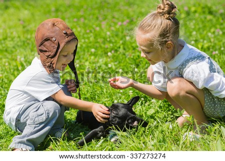 Happy children playing with the dog (French bulldog) on the grass. Brother and sister. - stock photo
