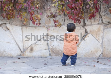 Happy Chinese baby boy standing in front of Boston Ivy, shot in Beijing, China - stock photo