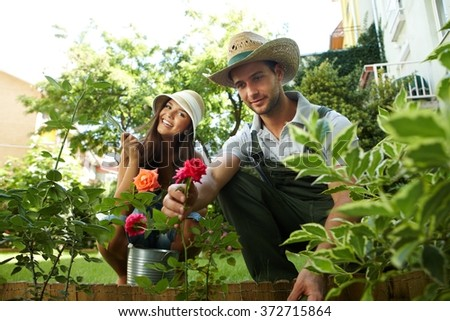 Happy couple taking care of roses in the garden, smiling. - stock photo